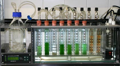 qubit-systems-photobioreactors